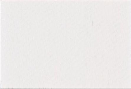 Brady - Y163291 - Brady Y163291 360件装 白色 空白不干胶标签, 19mm长, 13mm宽